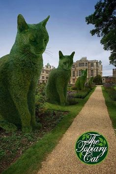Topiary Cats Sitting so Royally.