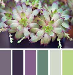 Inspiration: Purple cactus