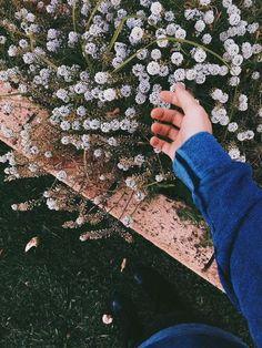 - ̗̀  Pinterest// Doxie634̗̀