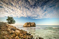 beach photography nature costa rica tree by CARLOSPALACIOS on Etsy, $15.00