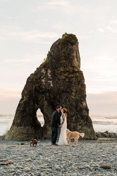 I absolutely love helping my couples plan dog friendly elopements. (I mean who can resist photos of the whole family? woof!) But there are a few things you will want to keep in mind if you're thinking about including your dog in your own elopement. I'm sharing my dog friendly elopement checklist, favorite dog friendly elopement locations, a packing list, Leave No Trace tips and more. Hawaii Adventures, Beach Elopement, Elopements, Best Day Ever, National Forest, Pacific Northwest, Dog Friends, Dog Bowls, State Parks