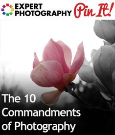 The 10 Commandments of Photography