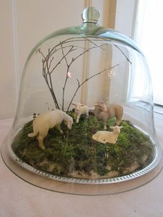 Our glass cloche set up for Easter. Sheep and lambs came from the girl's extensive Schleich collection, and we collected moss, sticks, and rock from the yard.