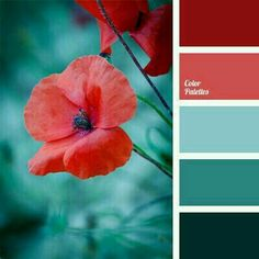 Palette The red of poppies looks very contrasting on a deep blue background. This color solution will look good in a living room.The red of poppies looks very contrasting on a deep blue background. This color solution will look good in a living room. Colour Pallette, Color Palate, Colour Schemes, Color Combos, Paint Schemes, Turquoise Color Schemes, Teal Color Palettes, Best Color Combinations, Green Palette