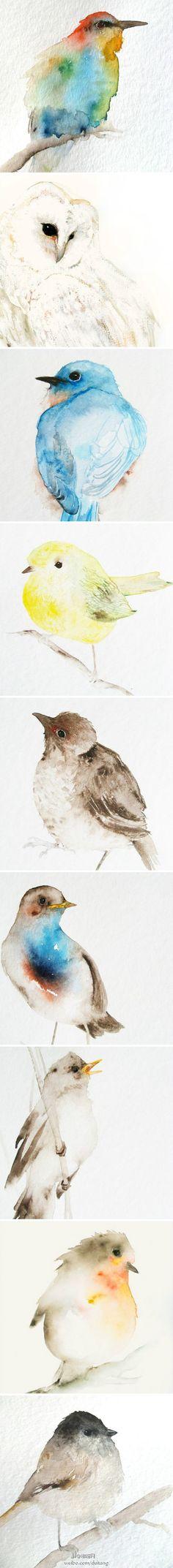 水彩画的小鸟,也可以很灵动呢!
