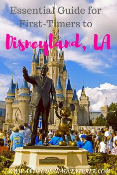 Planning a trip to Orlando, Florida? Here are the 10 things to know about Orlando, Fl USA from an insider with tips for Orlando, attractions in Orlando and places to go near Orlando! Voyage Disney World, Disney World Planning, Walt Disney World Vacations, Disney World Trip, Disney Travel, Disney Parks, Disney Money, Disneyland Vacations, Disney Hotels