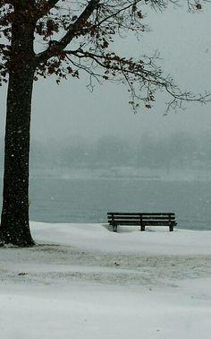 Winter/ Elizabeth park, Trenton Michigan.