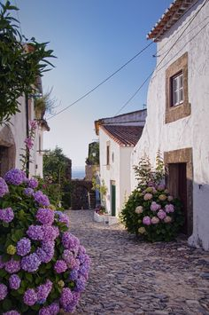 dustjacketattic: Castelo de Vide, Portugal (by Rui Pedro Vieira) Oh, the beautiful hydrangeas. Places Around The World, Oh The Places You'll Go, Places To Travel, Places To Visit, Around The Worlds, Travel Destinations, Wonderful Places, Beautiful Places, Spain And Portugal
