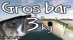 Pêche en mer - Prise en direct d'un gros bar de 3kg au black minnow aux ... Sea Fishing, Bass Fishing, Fishing Techniques, Rod And Reel, Sea Bass, Direction, Fishing Equipment, Surfing, It Cast