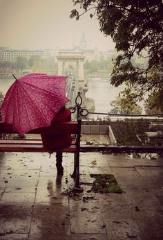 Rainy day:)