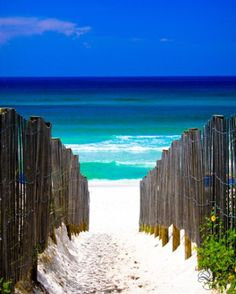 Path to the Ocean, Seaside, Florida I used to live about an hour and a half from here. The grain of the white sand is like sugar! Seaside is such a pretty little community. All of the beach houses are painted in the same pastel hues. Seaside Florida, Seaside Beach, Destin Florida, Destin Beach, Florida Usa, Florida Beaches, Sand Beach, Beach Bum, Seagrove Beach Florida