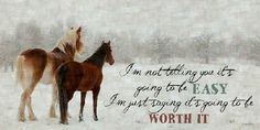 It's Going To Be Worth It Winter Art Horse by Summer Snow Art