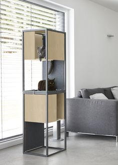 Some of the best cat beds and cat houses for the most cat fun and cat sleep. The nicest cat stuff and the best stuff for cats. These cute cats deserve nice cat beds Modern Cat Furniture, Pet Furniture, Cat Hotel, Animal Gato, Diy Cat Tree, Cat Towers, Cat Room, Cat Condo, Modern Architecture House