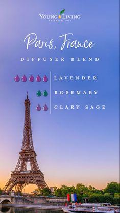 Clary Sage Essential Oil, Essential Oils Guide, Essential Oil Uses, Doterra Essential Oils, Young Living Oils, Young Living Essential Oils, Essential Oil Diffuser Blends, Perfume, Paris France
