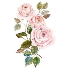 Dao Linh roses ($15) ❤ liked on Polyvore featuring filler, backgrounds, flowers, other, decor, detail and embellishment