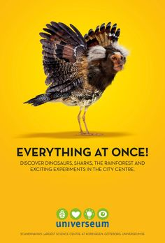 Universeum Sience Center: Everything at Once, 2