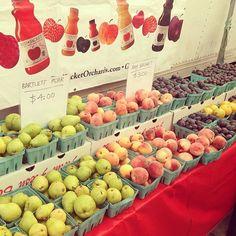 #farmersmarketnyc - Forest Hills Greenmarket via juls_evans on Instagram