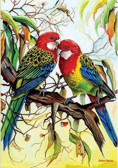 Eastern Rosella Greeting Card (Set of Rare Birds, Exotic Birds, Colorful Birds, Australian Painting, Australian Animals, Most Beautiful Birds, Motifs Animal, Bird Artwork, Bird Illustration