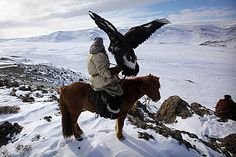 Eagle hunter in Altai mountains, Mongolia-