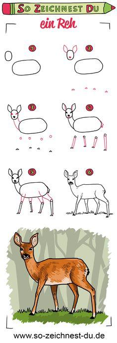 Die 7 Besten Bilder Von Rehe Zeichnen Deer Watercolor Deer Und