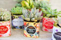 succulents-vintage-t