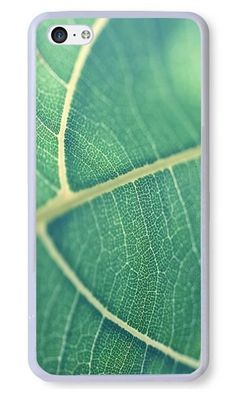 Cunghe Art Custom Designed White PC Hard Phone Cover Case For iPhone 5C With Leaf Bokeh Green Nature Phone Case https://www.amazon.com/Cunghe-Art-Custom-Designed-iPhone/dp/B0169ZU6H6/ref=sr_1_7655?s=wireless&srs=13614167011&ie=UTF8&qid=1468984795&sr=1-7655&keywords=iphone+5c https://www.amazon.com/s/ref=sr_pg_319?srs=13614167011&rh=n%3A2335752011%2Cn%3A%212335753011%2Cn%3A2407760011%2Ck%3Aiphone+5c&page=319&keywords=iphone+5c&ie=UTF8&qid=1468984148&lo=none