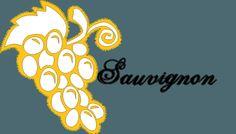 Cépage blanc : L'essentiel sur le Sauvignon.  #vin #wine #winelovers #aprendrelevin #cultureduvin #cépages #vignes #vigne