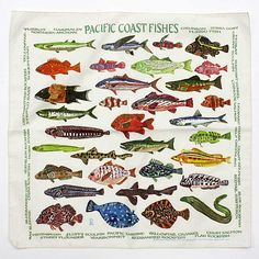 Other Brands The Printed Image / Nature Facts Bandanas - Pacific Coast Fishes