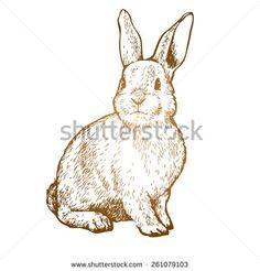 stock-vector-rabbit-ink-sketch-vector-illustration-261079103.jpg (450×470)