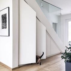 Unser unter der Treppe schafft optima… Smart storage space under the stairs! These simple cabinet doors from Vicky_Hellmann inspire us right! Staircase Storage, Stair Storage, Staircase Design, Basement Stairs, House Stairs, Under Stairs Cupboard, Built In Cupboards, Glass Stairs, Stairs Architecture