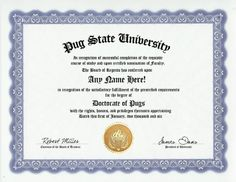 Pug Dog Degree: Custom Gag Diploma Doctorate Certificate (Funny Customized Joke Gift - Novelty Item) by GD Novelty Items. $13.99. One customized novelty certificate (8.5 x 11 inch) printed on premium certificate paper with official border. Includes embossed Gold Seal on certificate. Custom produced with your own personalized information: Any name and any date you choose.