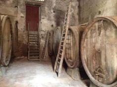 Etna Wein Tour- Wochenende!  Take it Slowly and feel!   #sizilien #urlaub #Ökotourism #wein #Etna #unaltrasicilia #takeitslowly