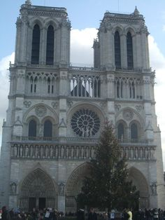 Notre Dame, Paris ~ go to the top, its worth it