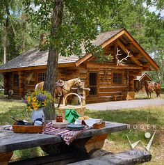 rustic architecture & design, guest cabin of Centennial Ranch with picnic table setting and horses Interior Design Photography, Interior Design Photos, Architectural Photography, Guest Cabin, Cozy Cabin, Log Home Living, Cabin In The Woods, Hunting Cabin, Log Cabin Homes