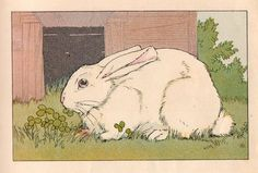 Don't you just love this beautiful white rabbit! Bunny Boy's story is from a 1930 Elson Basic Reader