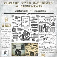 Vintage Type & Ornament Brush Set by Le Paper Cafe on @creativemarket
