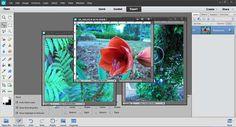 Navigating Photoshop Elements 12