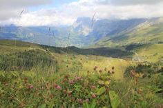 A view from Switzerland's majestic alps: #vacation #nature #adventure Visit transatlantic.travel or contact Eileen Schlichting to learn more!