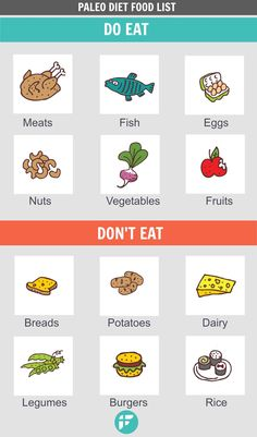 Paleo diet for beginners. Find out what's on Paleo's what to eat and not to eat food list.