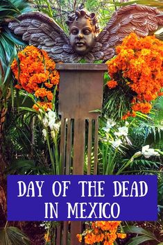 The Day of the Dead festival in Mexico at Xcaret park is a mix of brilliant performances, excellent food, and showcases of cultural traditions.