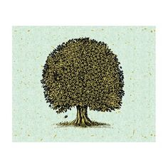 J.P. London Design, Inc. MD3032PS This Olde Oak Tree Peel and Stick Removable Full Wall Mural