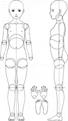 Ball Joint Doll Blueprint FREE Printable BJD