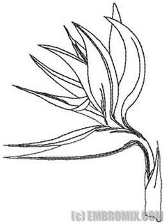 Flower Embroidery Design Bird-of-paradise Flower. Inspiration for Keon's leather tooling. Flower Embroidery Designs, Embroidery Motifs, Flower Patterns, Plant Drawing, Painting & Drawing, Birds Of Paradise Flower, Photo Stitch, Bird Drawings, Flower Drawings