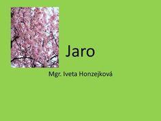 Jaro Mgr. Iveta Honzejková.>