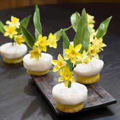 Sydney and Bobbie created elegant daffodil cupcakes for a wedding, and want to teach you how the daffodils were created. Yellow Cupcakes, Fancy Cupcakes, Easter Cupcakes, Cupcake Recipes, Dessert Recipes, Desserts, Cupcake Ideas, Mini Cakes, Cupcake Cakes