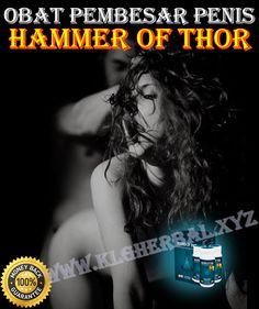 Obat Hammer Of Thor Asli Pembesar Penis