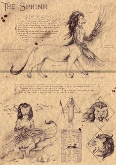 The Sphinx Mythical Creatures Art, Mythological Creatures, Magical Creatures, Fantasy Creatures, Beautiful Creatures, World Mythology, Myths & Monsters, Legends And Myths, Arte Horror