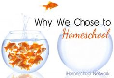 Why We Chose to Homeschool - iHomeschool Network - Special needs children