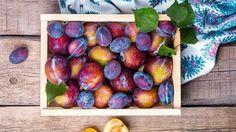 8 Health Benefits Of Plums #foodformyhealth #food #health #benefits #plums http://foodformyhealth.com/8-health-benefits-plums/