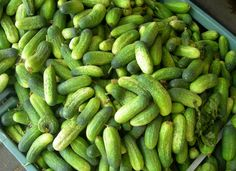 My favorite sweet little pickles. How To Store Cucumbers, Mixed Pickle, Sweet Pickles, Quick Easy Meals, Free Pictures, Food And Drink, Vegetables, Diet, Kochen